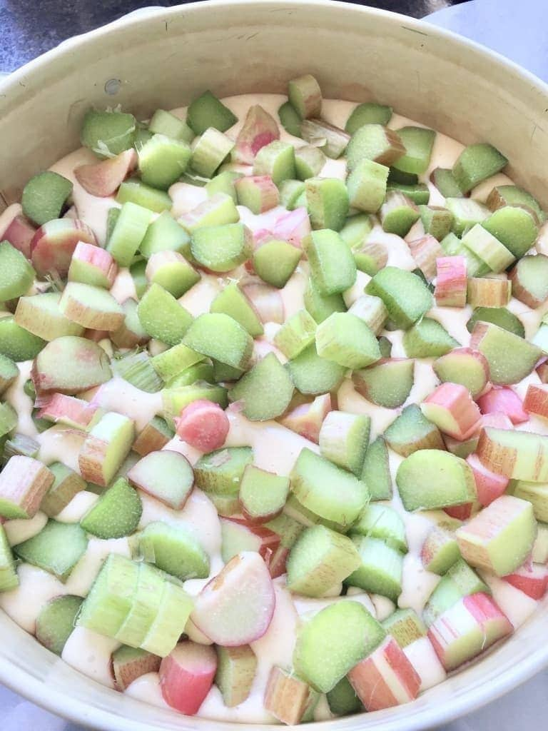 Rhubarb pieces on top of cake batter.