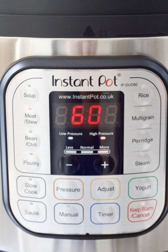 Front of Instant Pot showing 60 minutes.