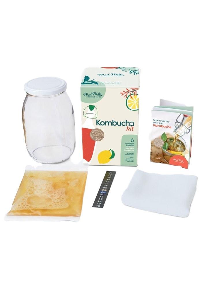 Content of kombucha making kit box.