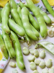 Broad beans in their pods and some podded.