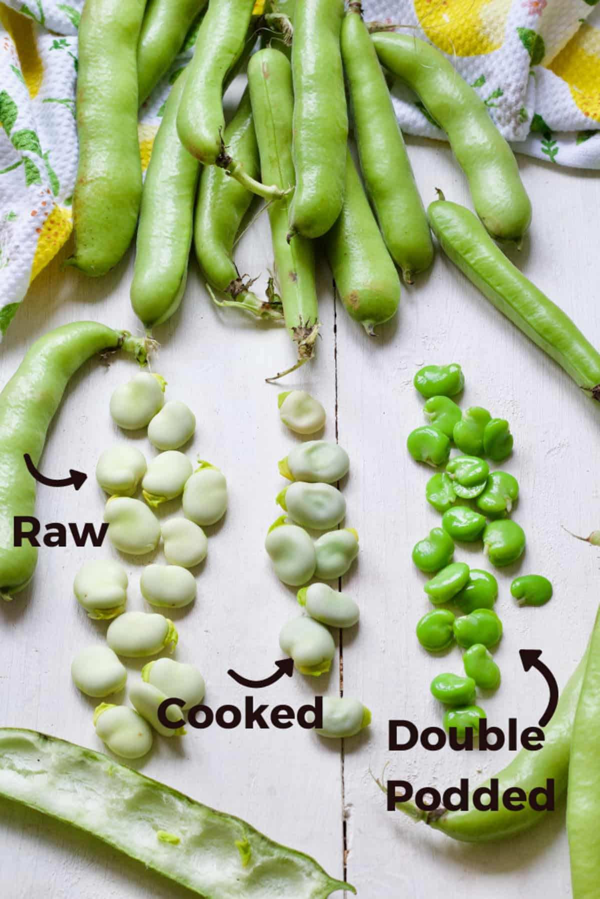 Broad beans shown raw, cooked & double podded.